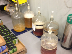 """Home Brew"" experiments at Westbrook Brewing."