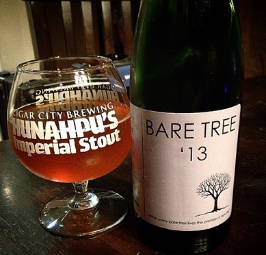bare tree 13