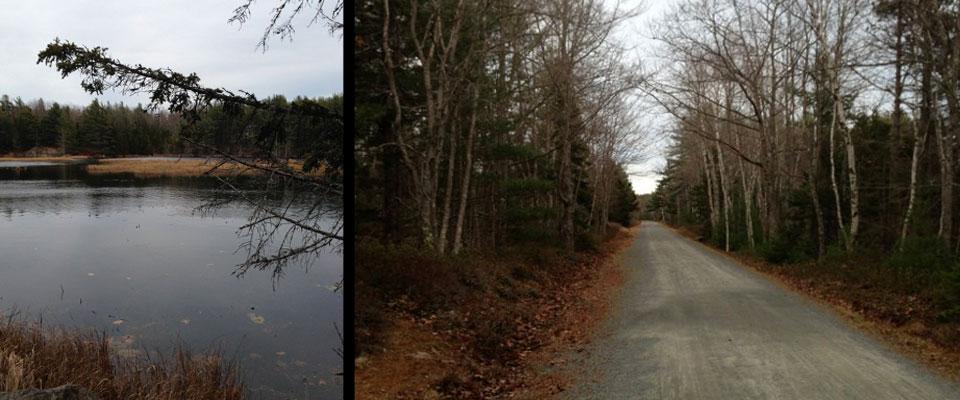 Running in Acadia National Park