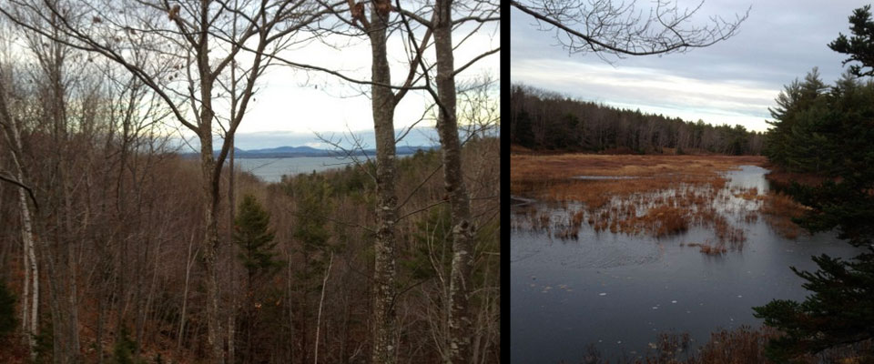 Water views in Acadia National Park